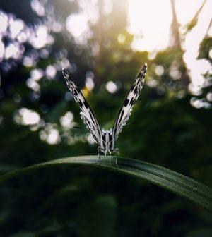 Photo by Hithesh Vk via Unsplash